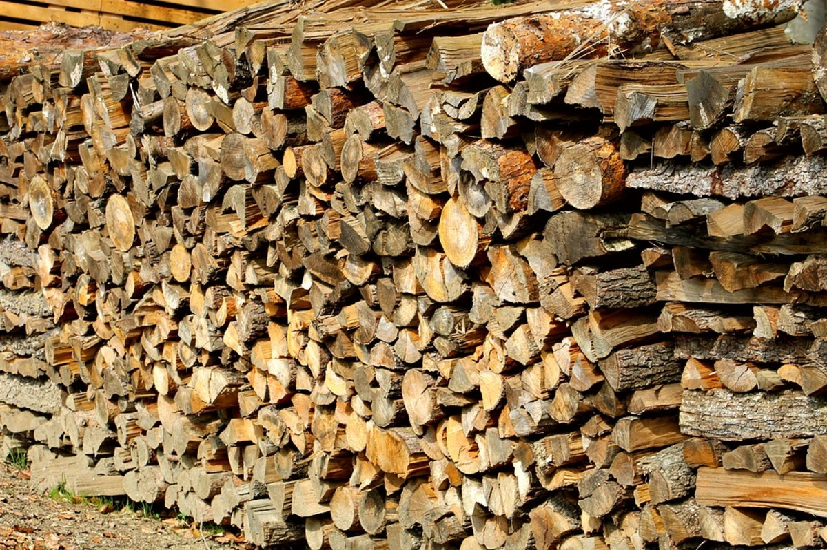 A wood pile that didn't need replinishing that much.