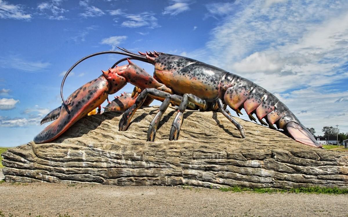 We should love the lobster as we do tennis bracelets.