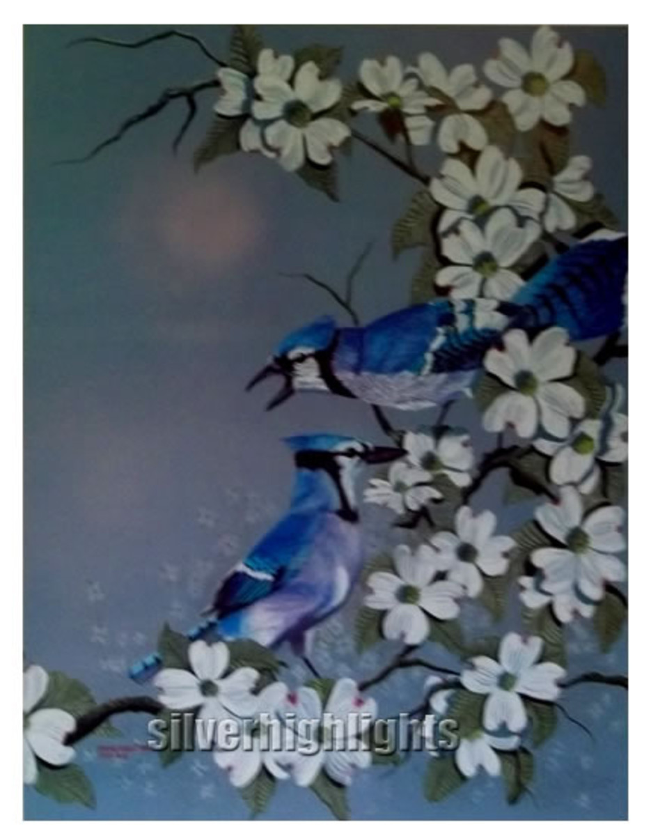 Color Pencil Blue Jays