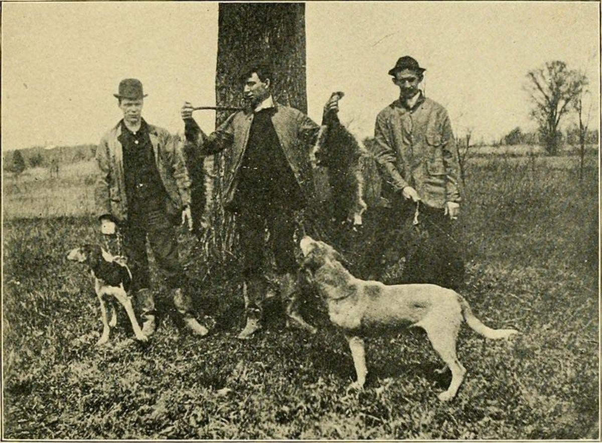 Life in old Virginia 1907.