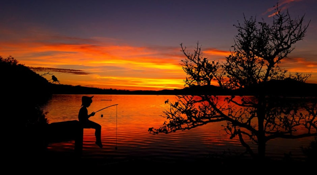 To me, this is THE perfect moment: a young boy using his Cane Pole to catch fish all day long until sundown. None can sing or write about it.