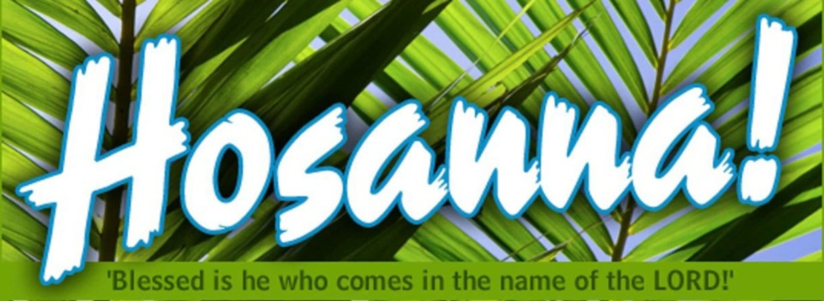 """The crowds sang """"Hosanna, blessed is he who comes in the name of the Lord."""""""