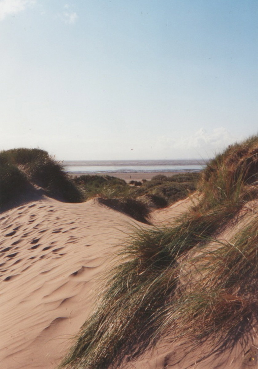 From Dunes to Beach to Sea