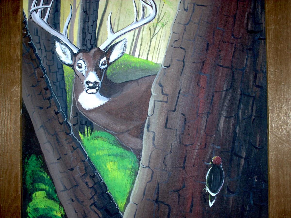 Beautiful deer all now gone away...