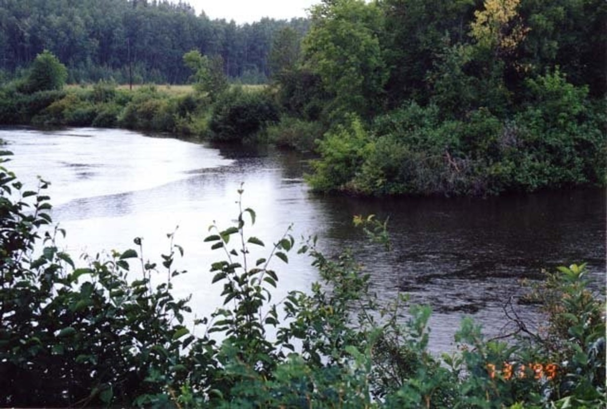 Our family farm is on this river, now really a 'creek,' but still a force of nature.