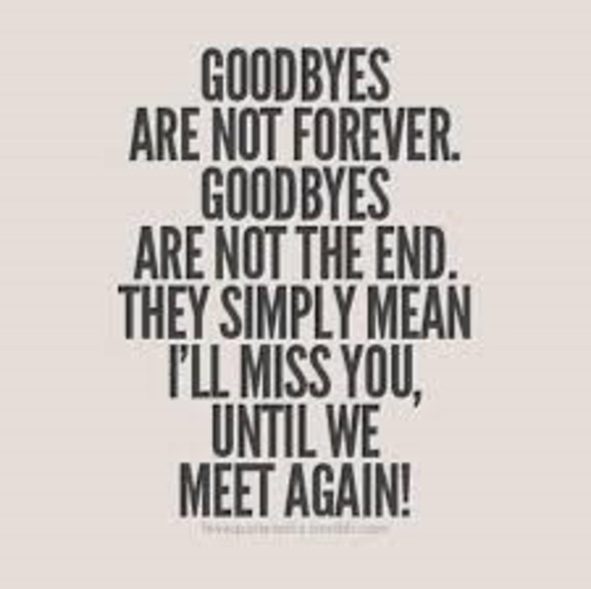 its-not-goodbye-entity