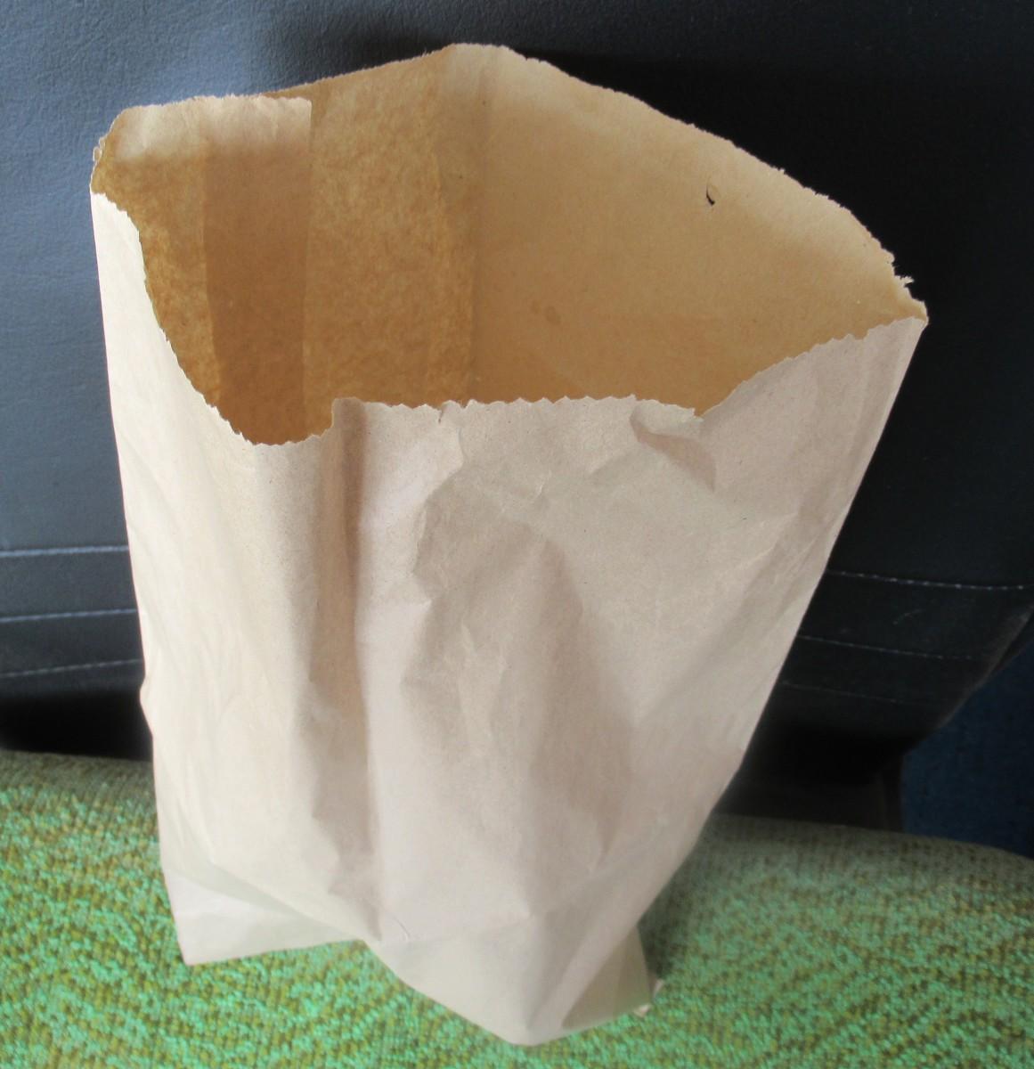 Trusty Paper Bag