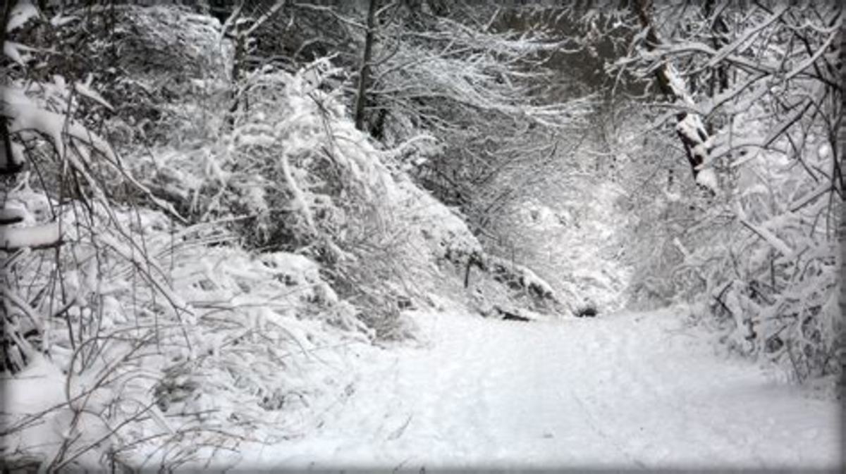the-harsh-cold-winter-flash-fiction-by-manatita-a-dedication-to-frank-atanacio