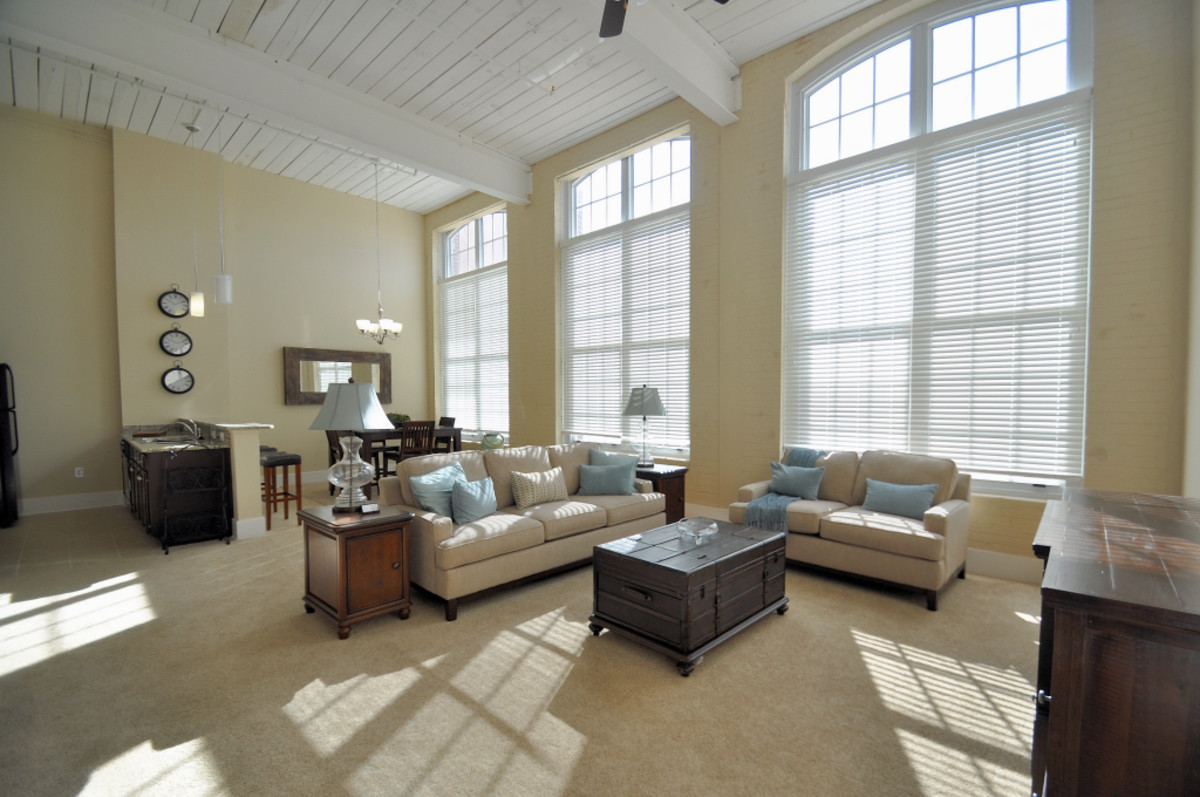 Spacious apartment with huge windows in old Oakland Mill