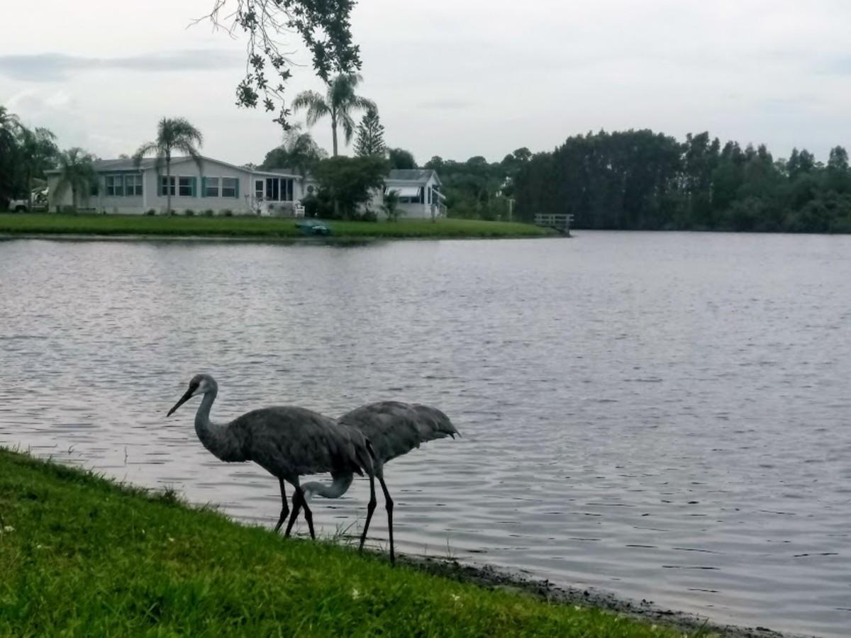 Hobe Sound, Florida