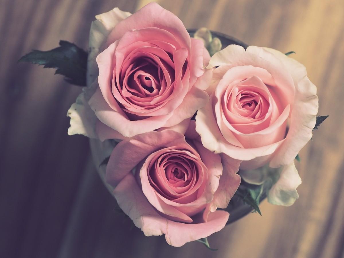 fluttering-heart-a-love-poem