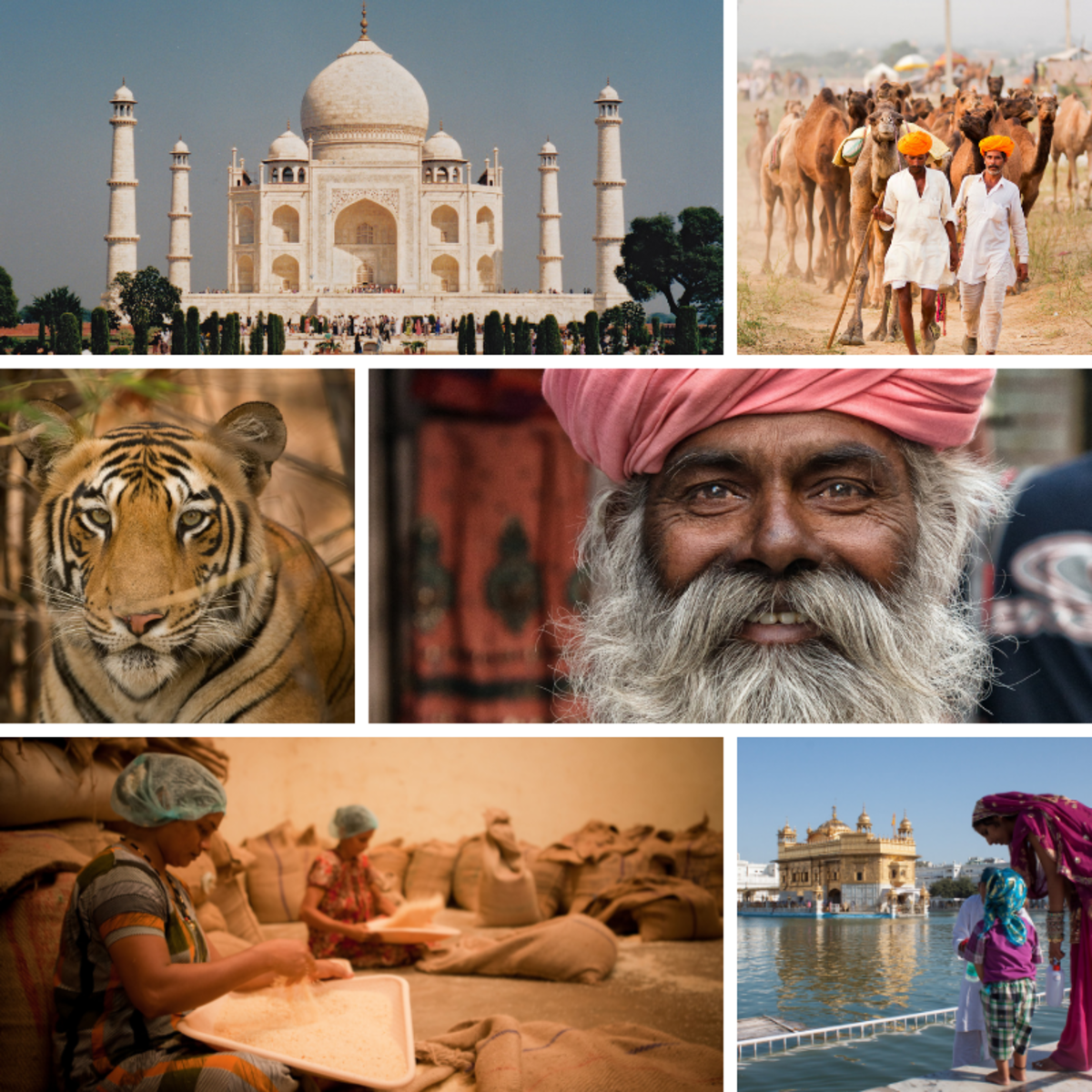 Essay on cultural diversity in india