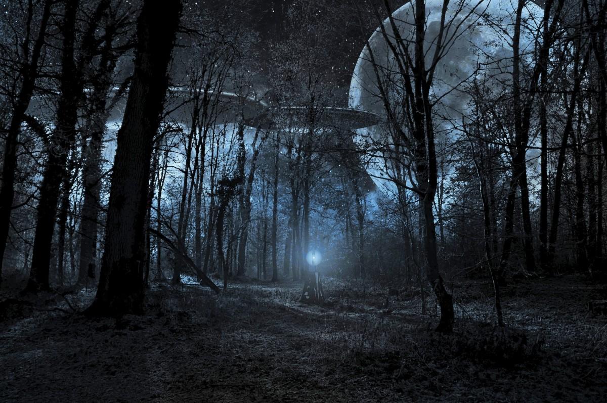 alien-unknown