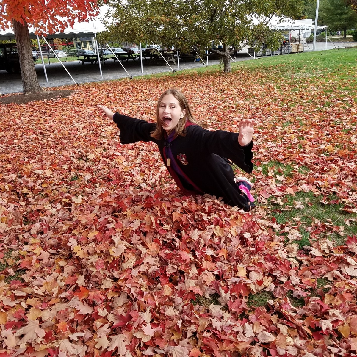 My daughter wearing a Harry Potter robe as she falls into a pile of leaves at the Ecotarium in Worcester, MA
