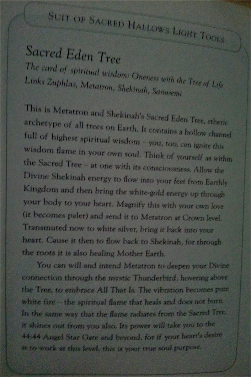 """Angela's Text Interpretation of the """"Sacred Eden Tree"""" Card from the Book Included with the Deck"""