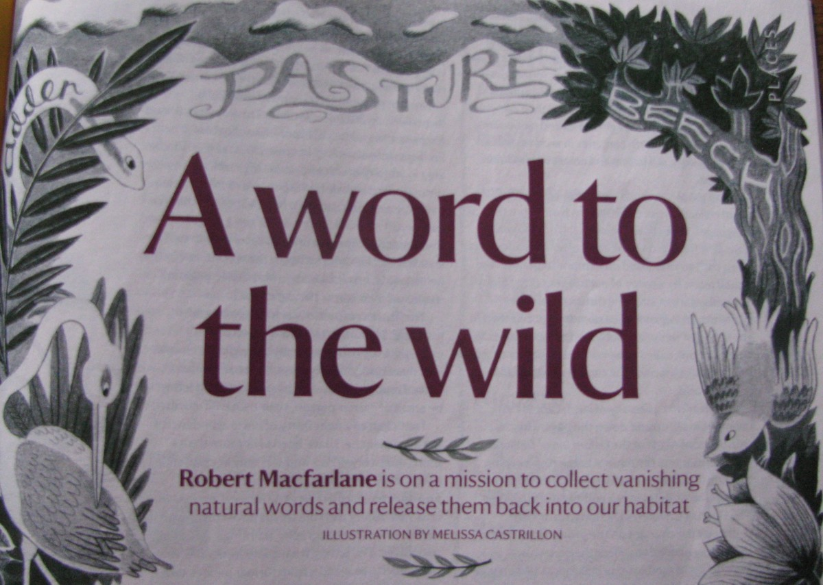 Reference to Robert Macfarlane's 'Landmarks'