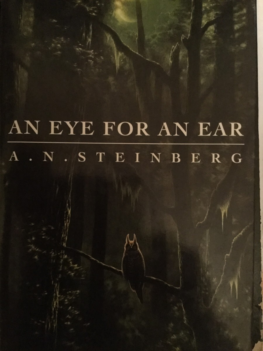 An Eye For an Ear by A.N. Steinberg
