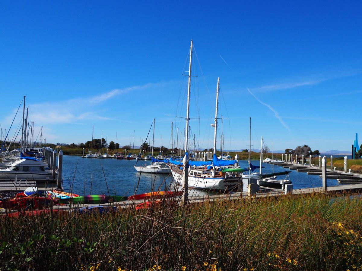 Sailboats at dock, Antioch, CA marina