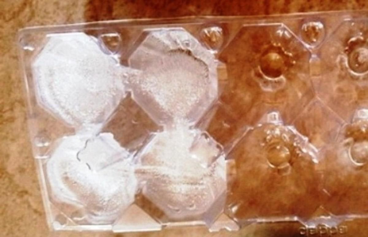 Ice Tray (Plastic Egg Carton)