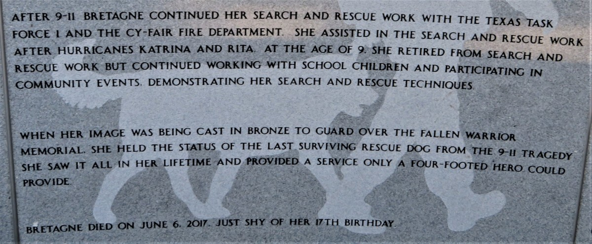 Story of the service dog Bretagne