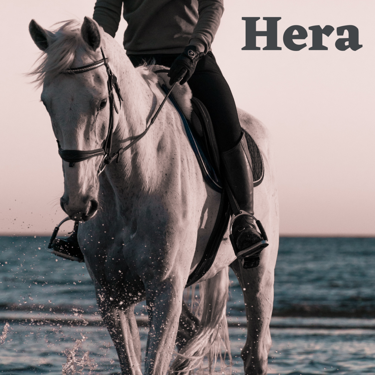 Hera would make a fine name for a particularly regal horse.