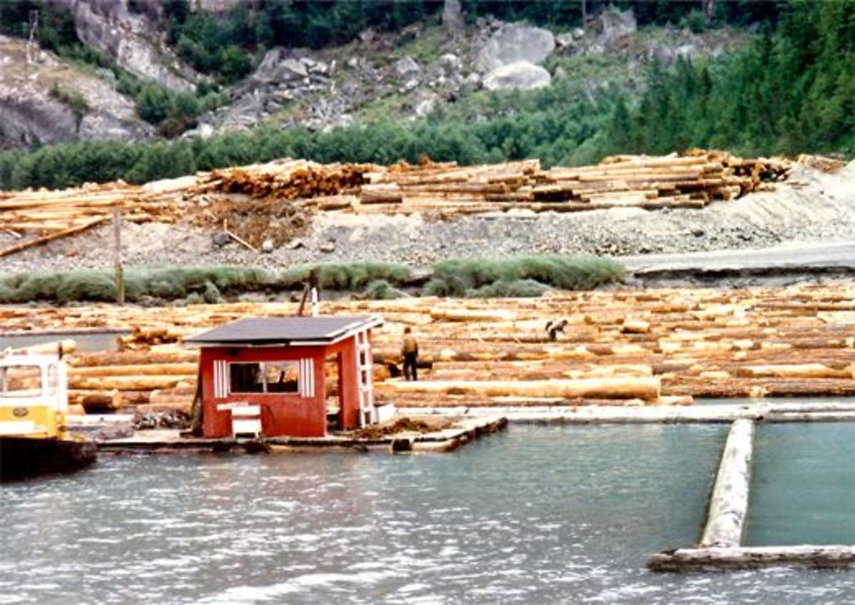 We start seeing more timber being floated in the water.