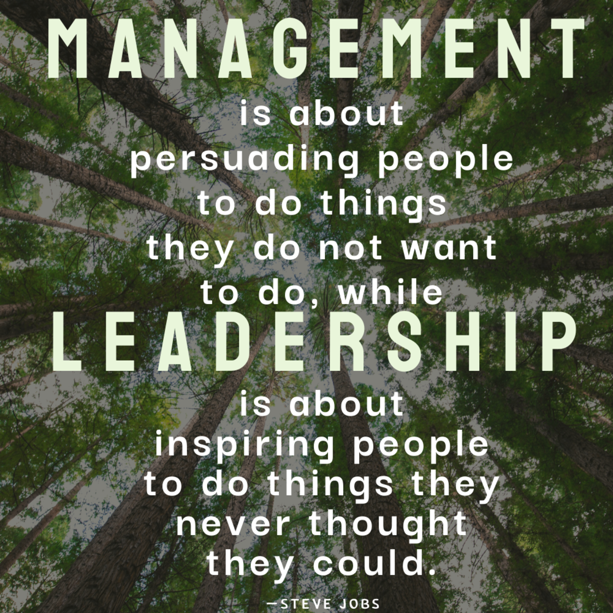 The difference between managing people and leading a team.