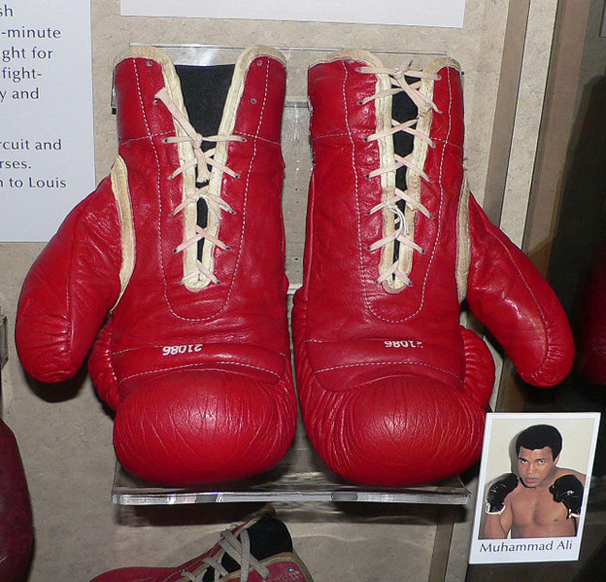 Muhammad Ali's boxing gloves.  Ali is perhaps the most famous and charismatic boxer ever.  The only three-time lineal World Heavyweight Champion, he was diagnosed with Parkinson's syndrome in 1984, a disease associated with head trauma and boxing.