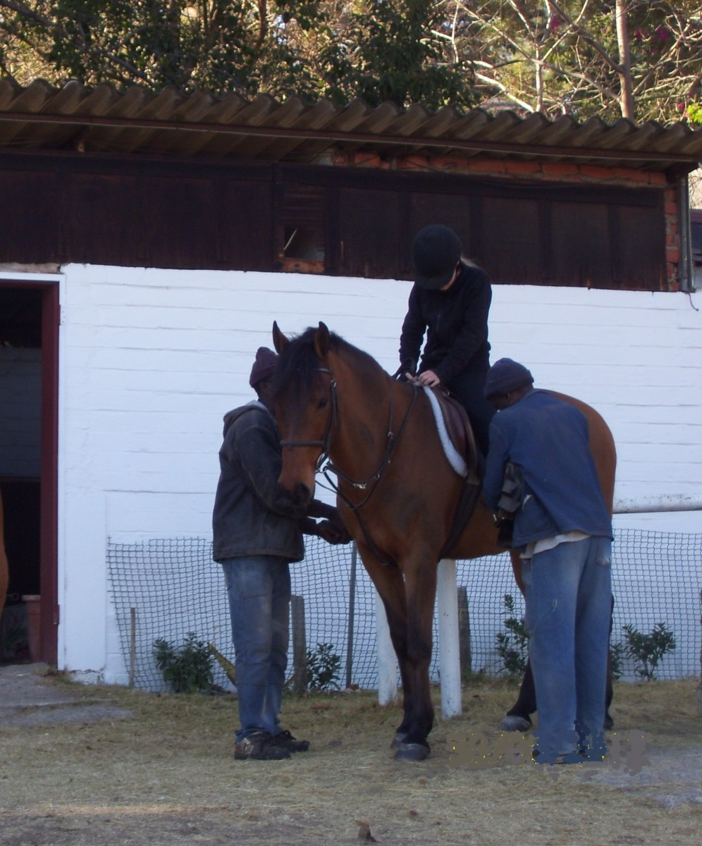 Make sure your horse is saddled correctly before you go riding.
