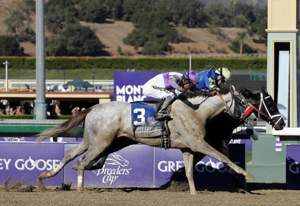 Photo Finish of the 2012 BC Juvenile race, won by Shanghai Bobby and ridden by Rosie Napravnik