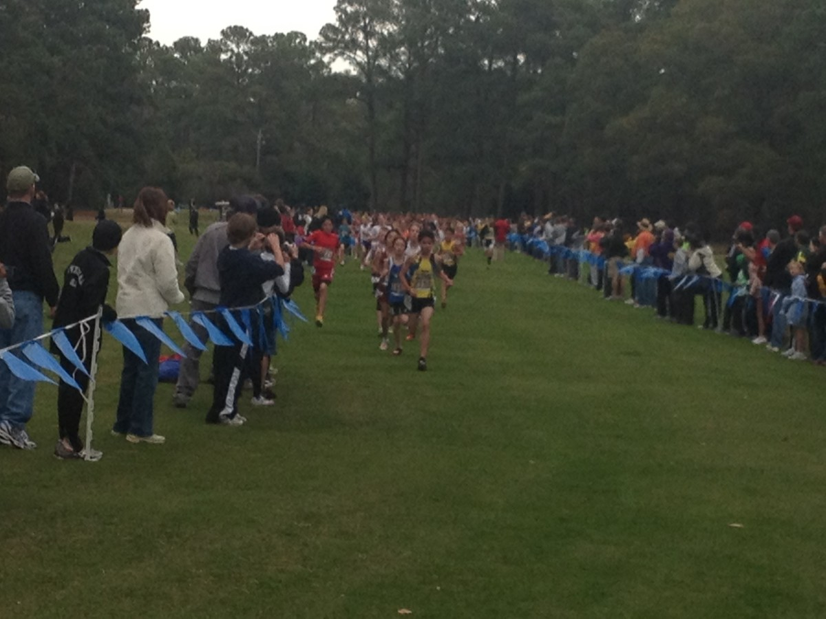 The final stretch of a cross country race