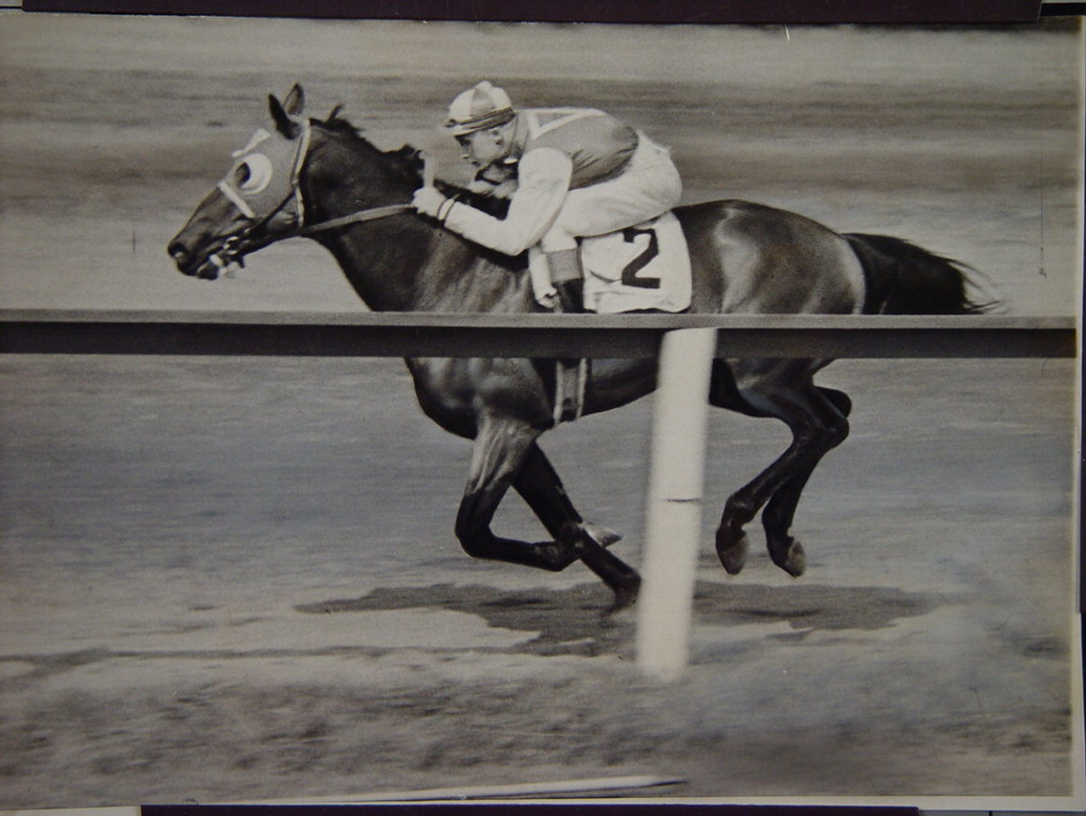 9 Top Racehorses in History