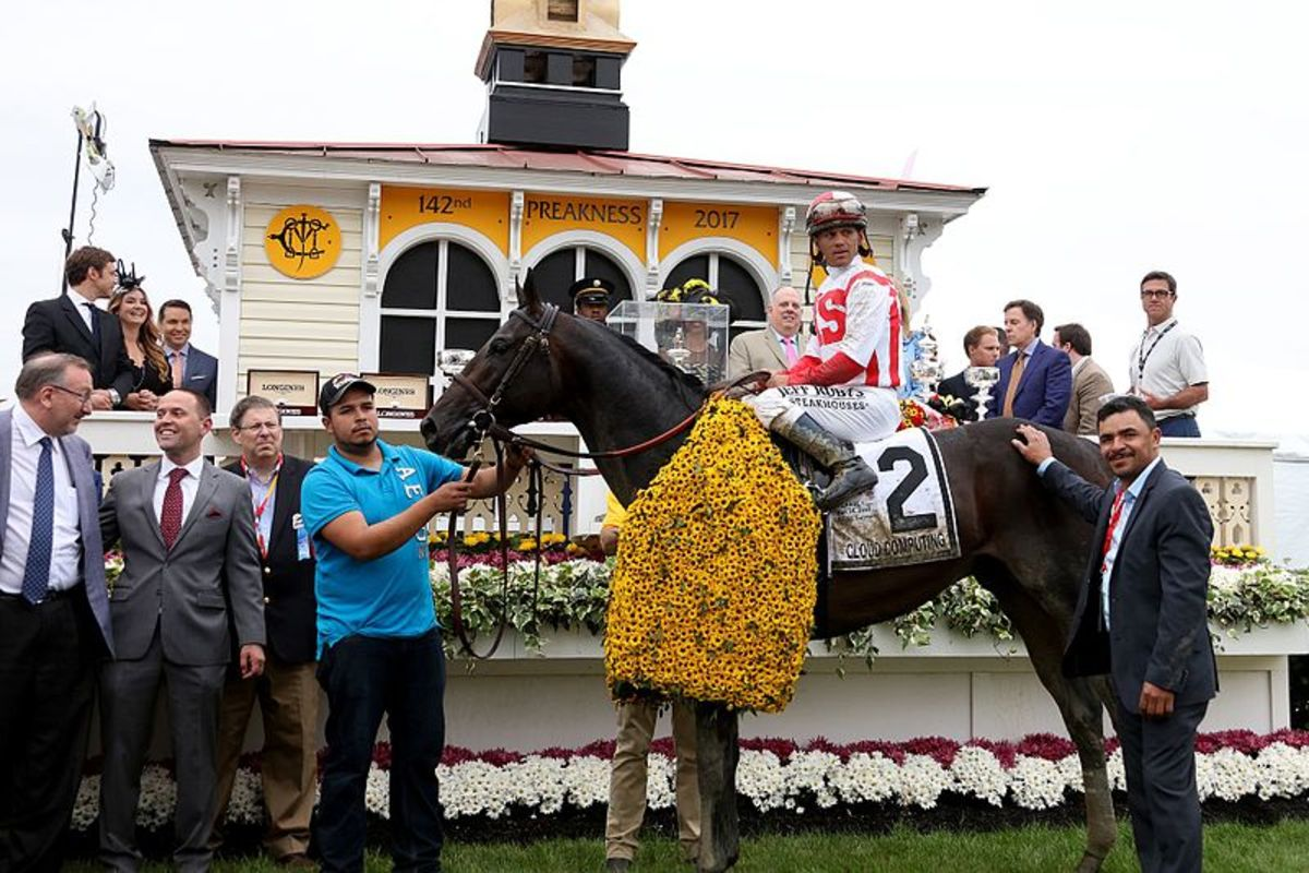 The winner of the 2017 Preakness Stakes bearing a coat of Black-eyed Susans, the Maryland state flower.