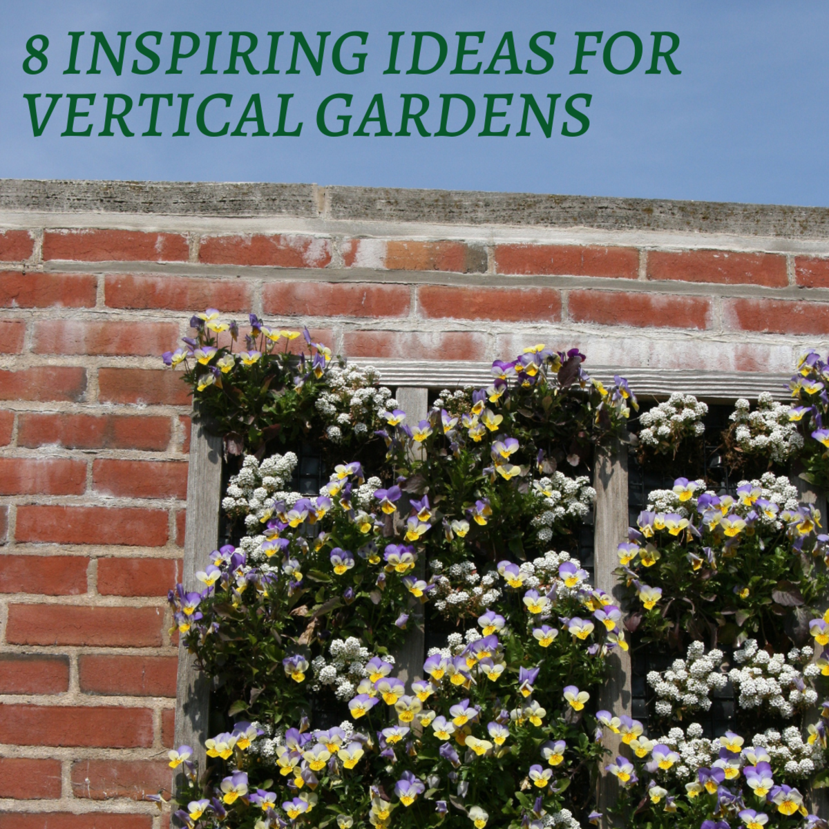 This guide will provide a look at eight unique and wonderful options for crafting an exquisite vertical garden.