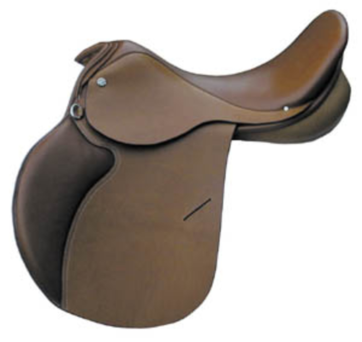 10 Different Types Of Horse Riding Saddles Howtheyplay Sports