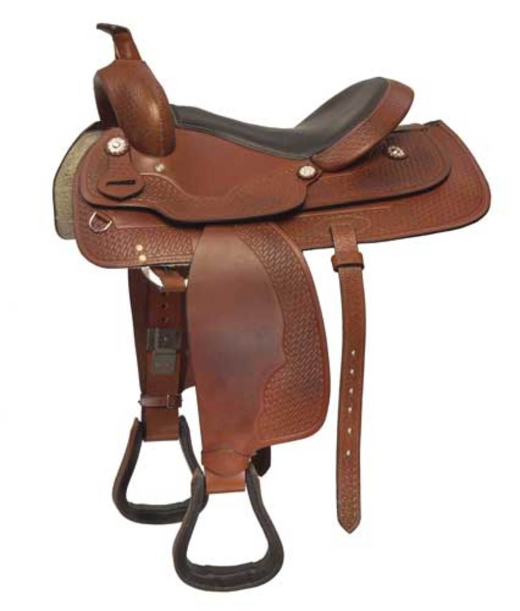 10 Different Types of Horse Riding Saddles | HowTheyPlay
