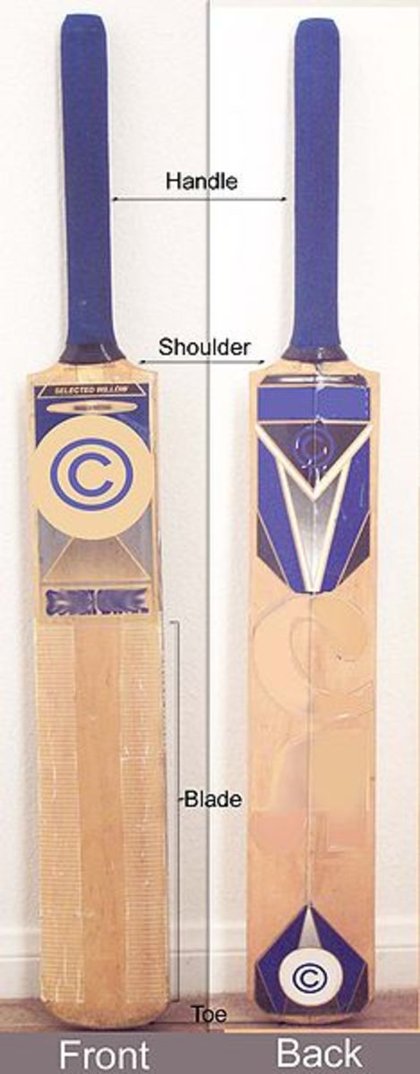 A cricket bat