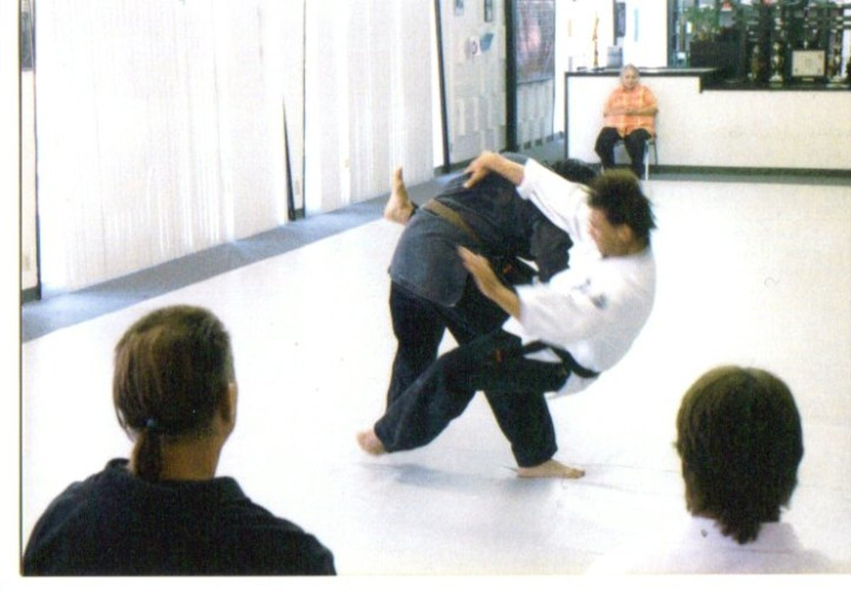 The evolution of the human brain has allowed for complex brain functions that make it possible to execute throws in martial arts.