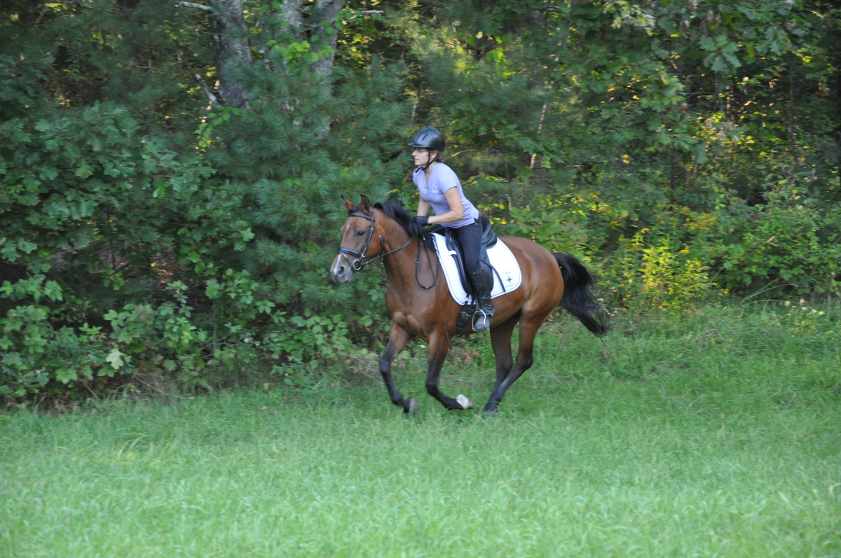 Staying centered and balanced is very important while galloping.