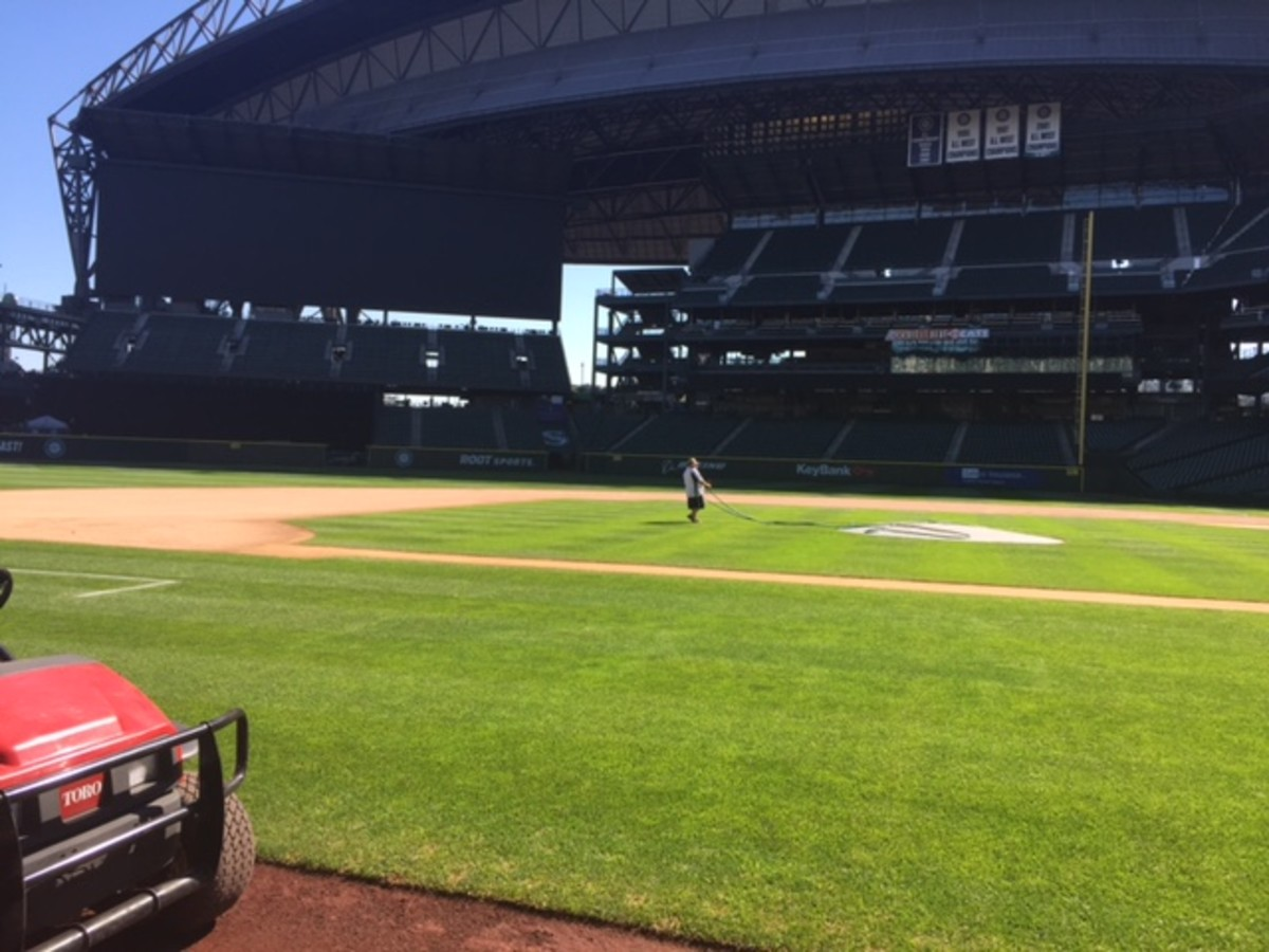 Safeco, a view from the visitors' dugout.
