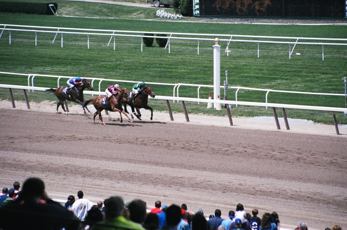 """The Belmont Stakes is known as """"The Run for the Carnations,"""" because the winning horse and jockey receive a blanket of white carnations."""