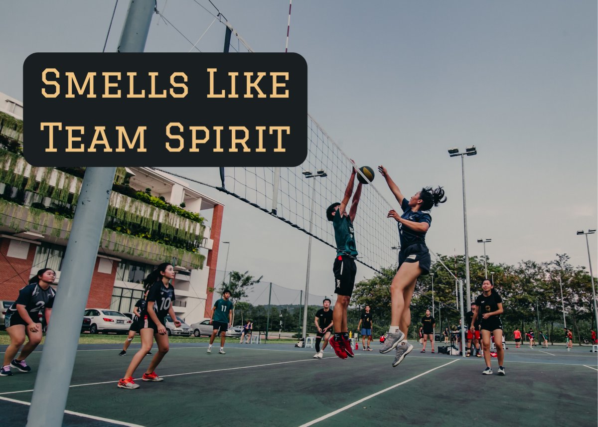 """Smells Like Team Spirit is an homage to the Nirvana song """"Smells Like Teen Spirit."""" This would be a great name for a team from Seattle, Aberdeen, or elsewhere in Washington."""
