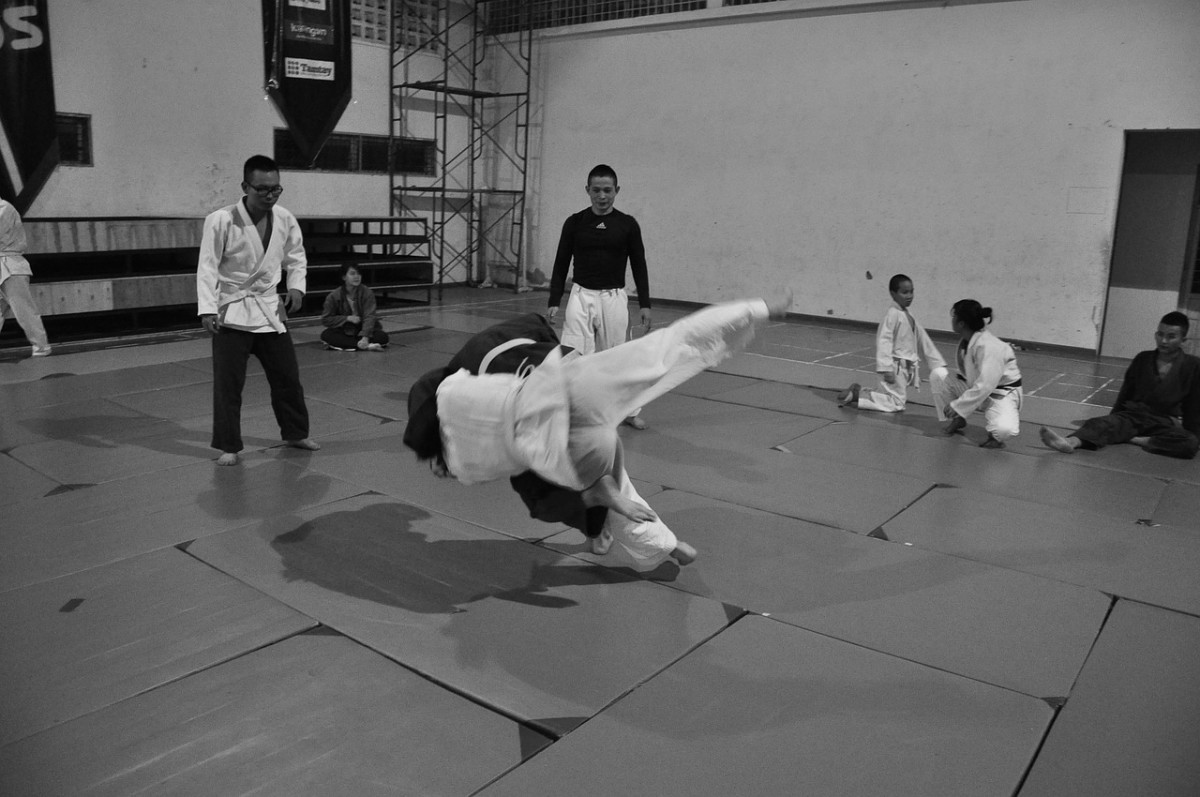 The basis of arts like Jiu Jitsu is to not use force but to use leverage.