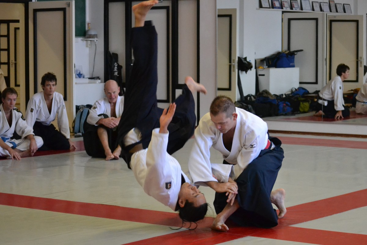 Aikido, like Tai Chi, uses flowing motion to redirect an attacker's movement to use it against him.