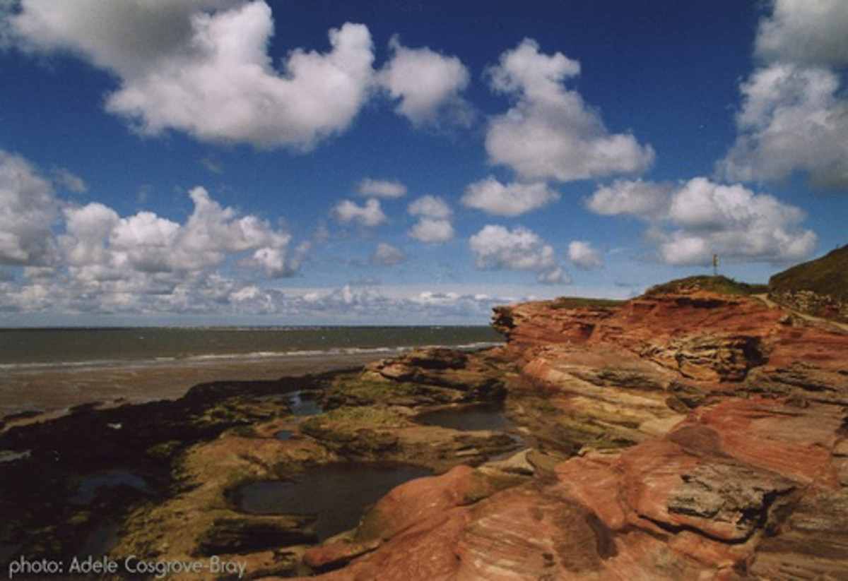 Wirral Walks - Hilbre Island