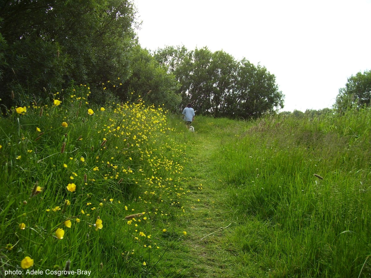 gilroy-nature-park