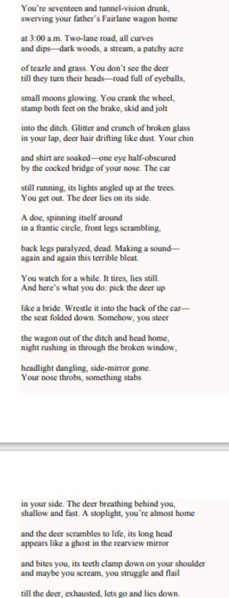 analysis-of-poem-deer-hit-by-jon-loomis