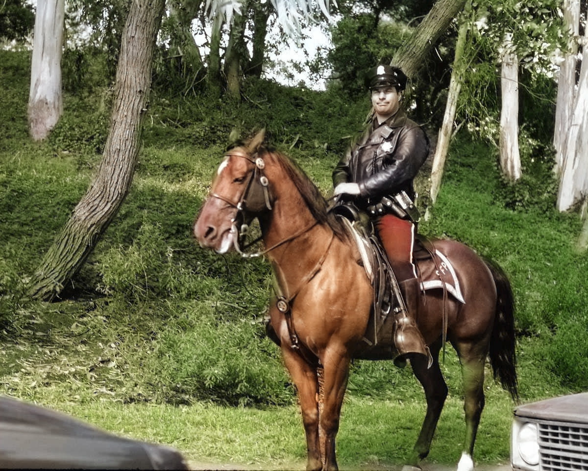 Colorize Photos did a good job on the foliage and the horse, but it colored the hind legs green, and it skipped the face of the rider. I would also remove the red from the officer's trousers.