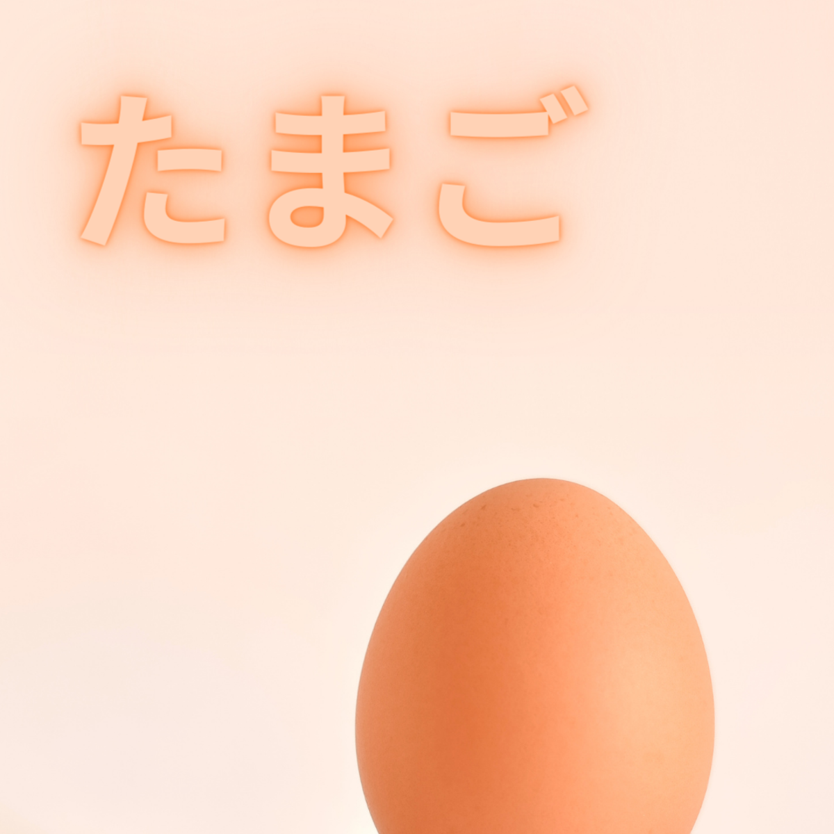 Tamago or Egg