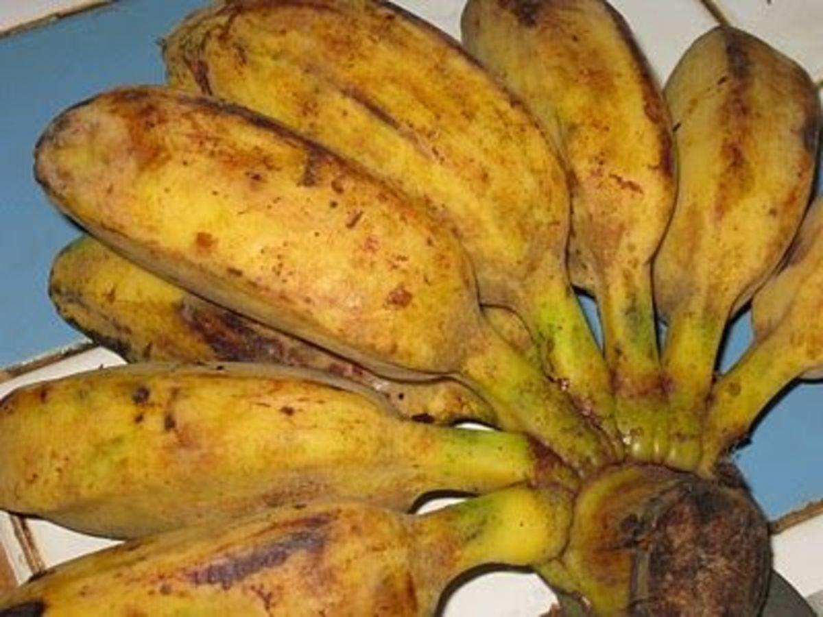 Saba bananas, aka cardaba banana
